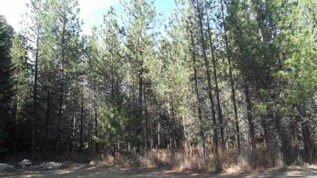 00 River View Rd, Cusick, WA 99119 (#201910705) :: Northwest Professional Real Estate