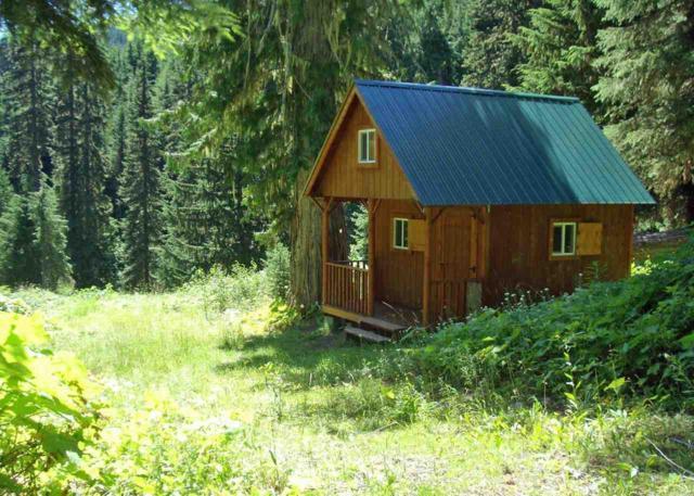 xxxxx Cedar Creek Rd, Ione, WA 99139 (#201910938) :: Northwest Professional Real Estate