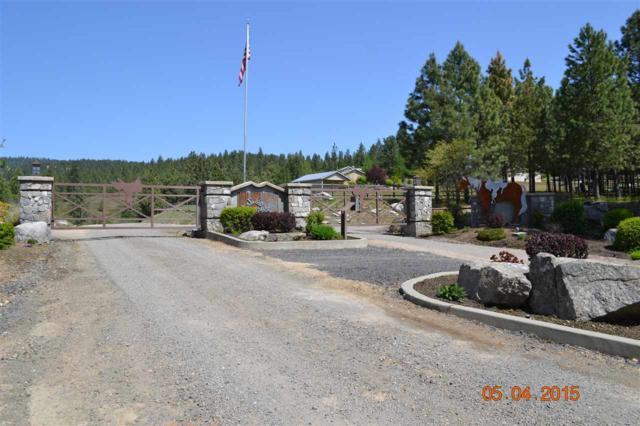 XX Blueridge Way Lot #37, Deer Park, WA 99006 (#201910983) :: The Synergy Group