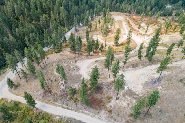 15411 E Bill Gulch Rd, Mead, WA 99021 (#201911116) :: The Synergy Group