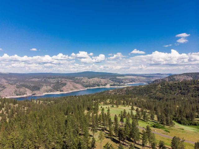 NHN N Bozeel Rd, Davenport, WA 99122 (#201911406) :: Prime Real Estate Group