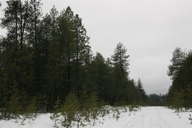NKA E Elk Bluff Ln, Chattaroy, WA 99003 (#201911482) :: April Home Finder Agency LLC