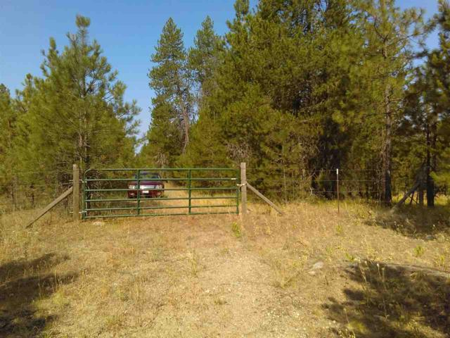37620 N Valley Rd, Elk, WA 99009 (#201911558) :: Northwest Professional Real Estate