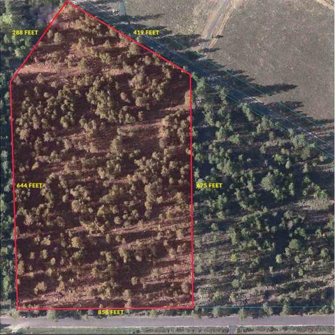 xxxx W Bernhill Rd, Colbert, WA 99005 (#201911731) :: Five Star Real Estate Group