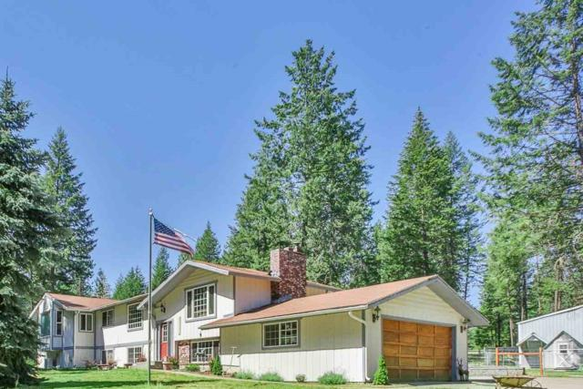 42413 N Division Rd, Deer Park, WA 99006 (#201912087) :: The Synergy Group