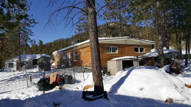 4043D Garden Spot Rd, Loon Lake, WA 99148 (#201912225) :: The Synergy Group