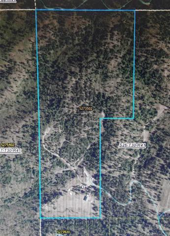 4043D Garden Spot Rd Rd, Loon Lake, WA 99148 (#201912231) :: The Synergy Group