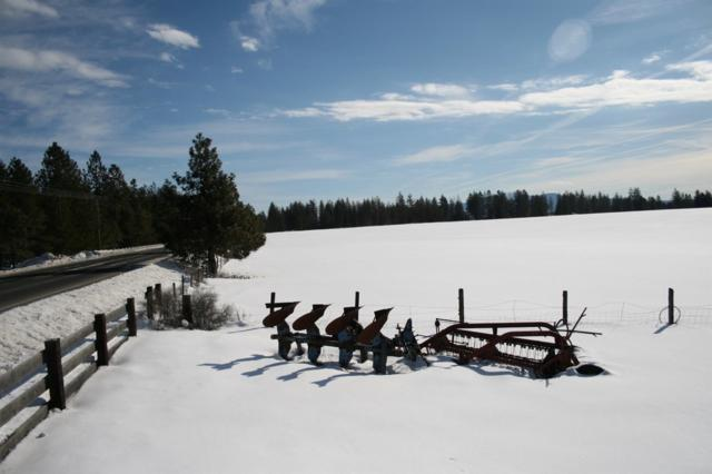 00 Eloika Lake Rd Lot E, Deer Park, WA 99006 (#201912250) :: The Synergy Group