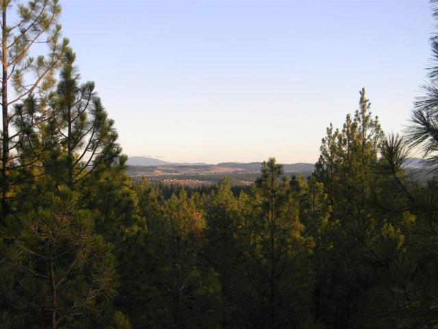 1106 W Austin Rd, Spokane, WA 99208 (#201912397) :: The Synergy Group