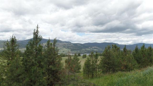 2165 D Mollenberg Rd, Kettle Falls, WA 99141 (#201912432) :: The Synergy Group
