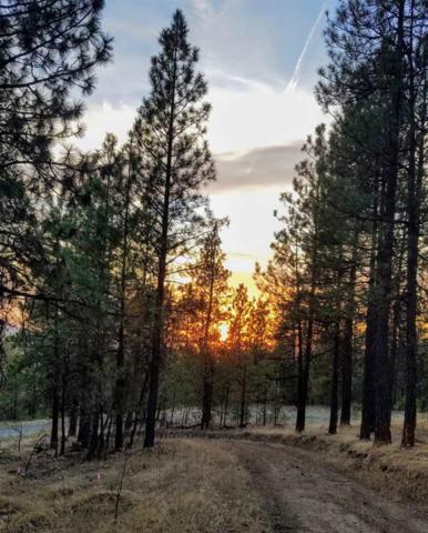 13853 S Serenity Ln, Valleyford, WA 99036 (#201912750) :: The Spokane Home Guy Group