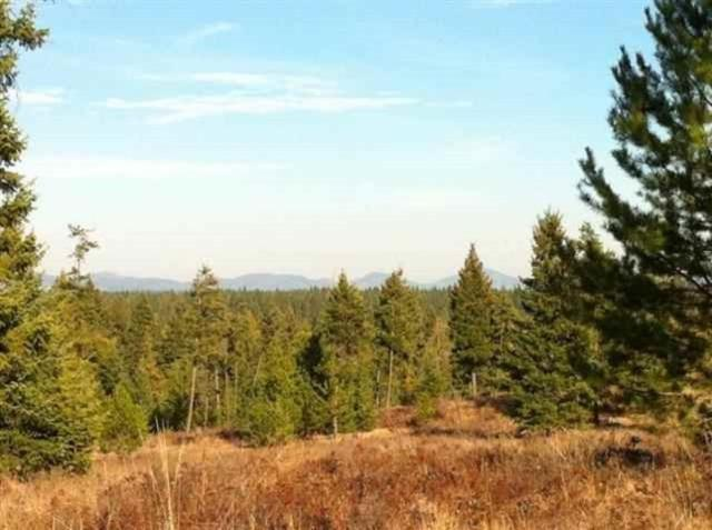 Lot#35 North Park Ln, Deer Park, WA 99006 (#201912752) :: The Synergy Group