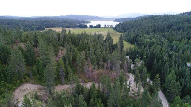 20300 E Mountain View Rd, Newman Lake, WA 99025 (#201913388) :: The Hardie Group