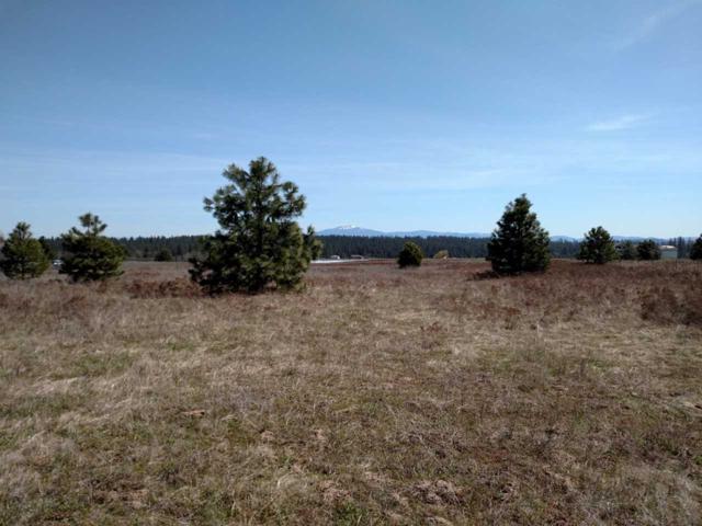 000 Monroe Rd, Deer Park, WA 99006 (#201913583) :: The Spokane Home Guy Group