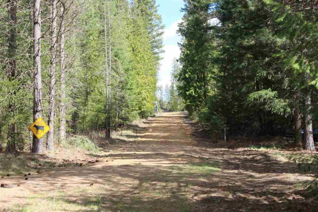 4763 Garden Spot Rd, Deer Park, WA 99006 (#201914467) :: Prime Real Estate Group