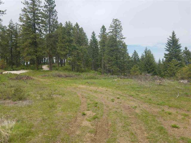 42619 Mt Moriah Way, Loon Lake, WA 99148 (#201914599) :: RMG Real Estate Network