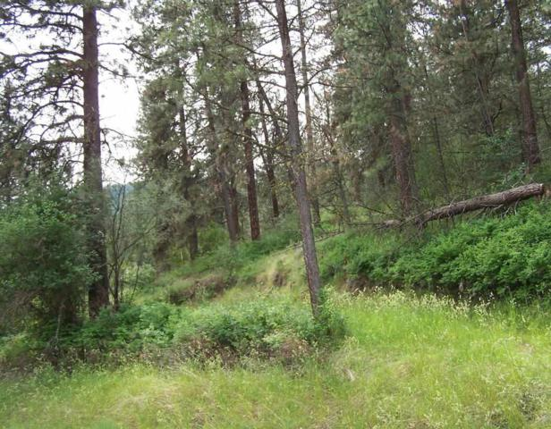 23xx Northport Flat Creek Rd, Kettle Falls, WA 99141 (#201915543) :: The Synergy Group