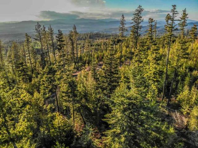 29901 N Blanchard Creek Rd, Elk, WA 99009 (#201915640) :: The Synergy Group