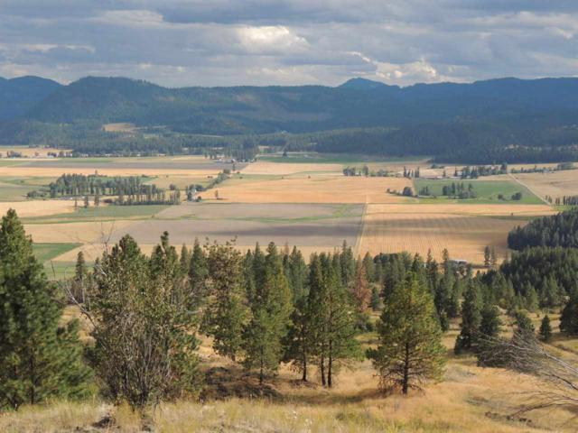 000 Marble Valley Basin Rd, Chewelah, WA 99109 (#201915704) :: The Synergy Group
