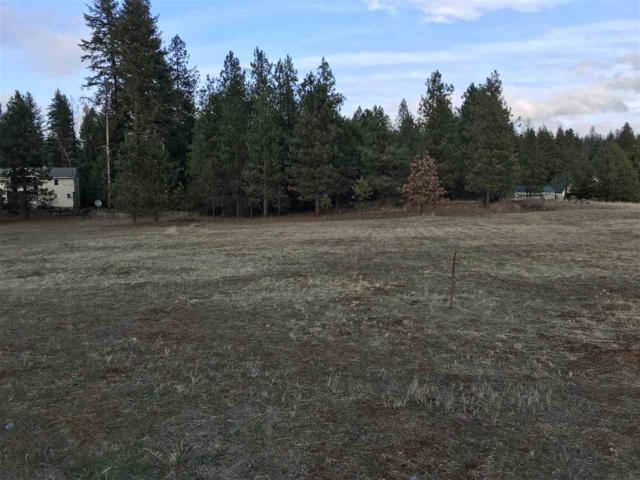 365xx N River Estates Dr, Spokane, WA 99003 (#201915715) :: RMG Real Estate Network