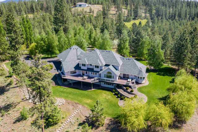 20640 W South Bank Rd, Nine Mile Falls, WA 99026 (#201915925) :: 4 Degrees - Masters