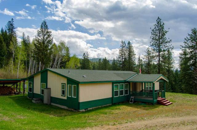 3434-A Rockcut Rd, Kettle Falls, WA 99141 (#201915974) :: The Synergy Group