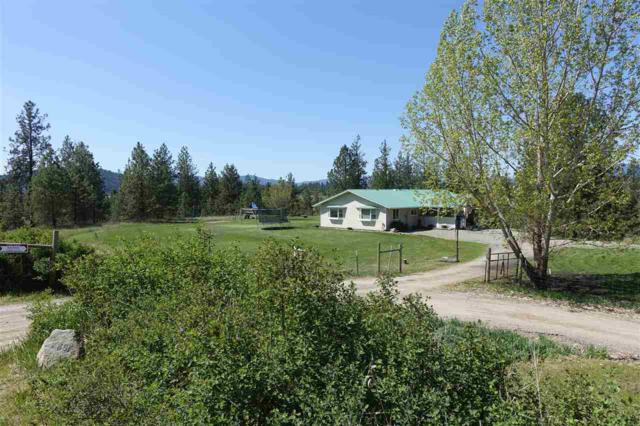 688 D Mahoney Rd, Colville, WA 99114 (#201915989) :: The Synergy Group