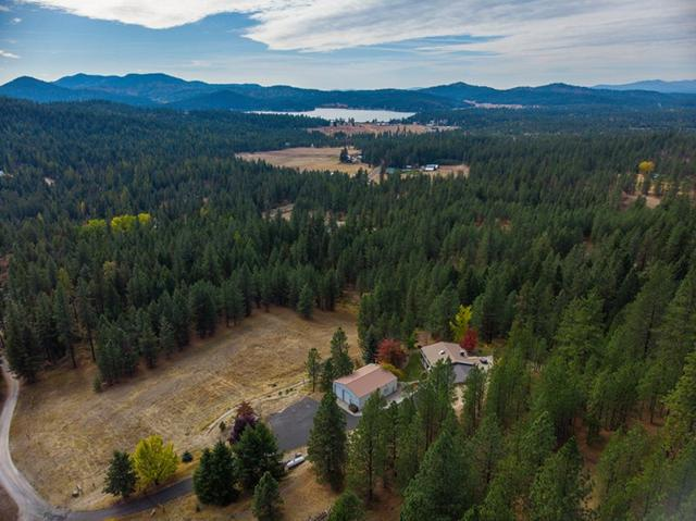 41XX Ali Vista Way, Loon Lake, WA 99148 (#201916101) :: The Synergy Group
