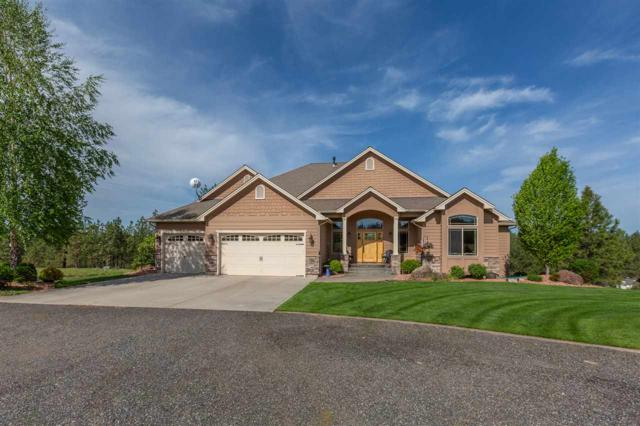 24216 N Park View Ln, Chattaroy, WA 99003 (#201916131) :: The Synergy Group