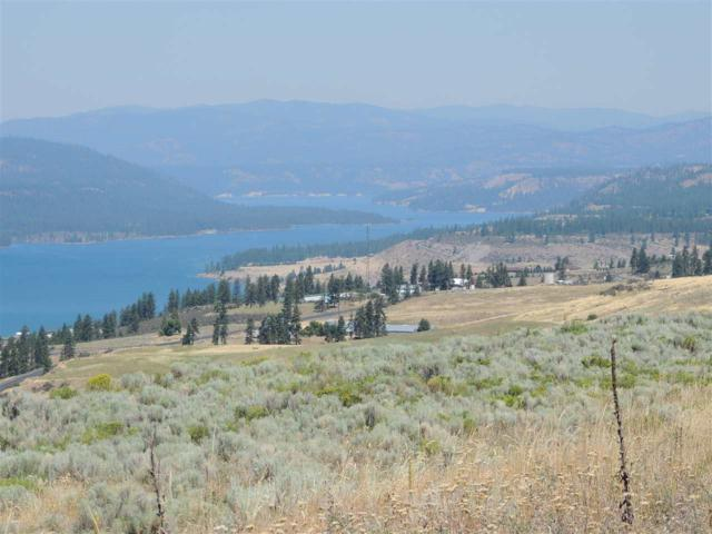 Lakeview Heights Tract 15, Davenport, WA 99122 (#201916149) :: The Synergy Group