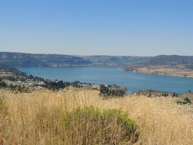 Lakeview Heights Tract 16, Davenport, WA 99122 (#201916150) :: The Synergy Group