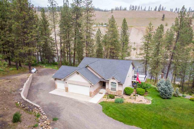 47861 E Riverview Ln, Ford, WA 99013 (#201916375) :: RMG Real Estate Network
