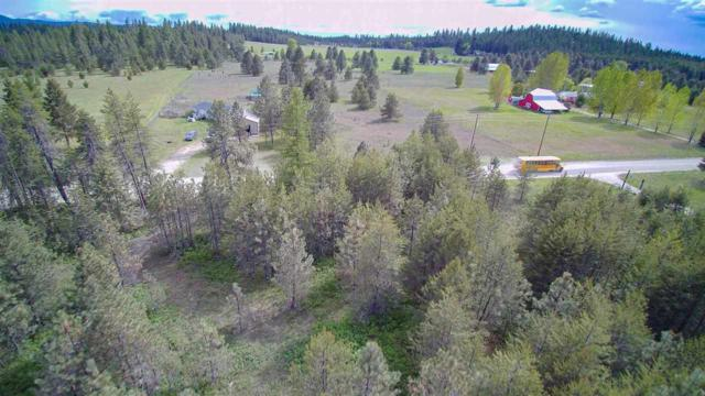 12525 E Bridges Rd, Elk, WA 99009 (#201916399) :: RMG Real Estate Network
