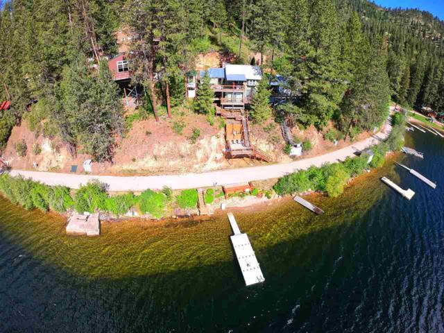 4005 N Deer Lake Rd, Loon Lake, WA 99148 (#201916461) :: The Synergy Group
