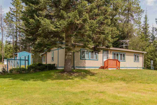482 Mccammon Dr, Elk, WA 99009 (#201916465) :: Northwest Professional Real Estate