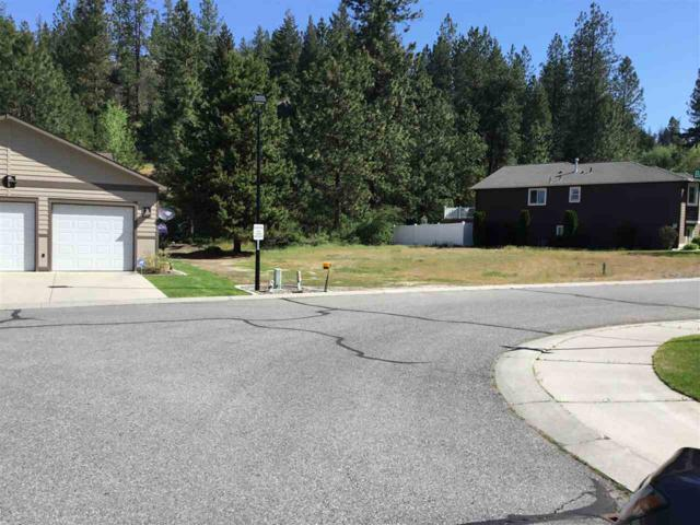 6025 Ruby Way, Nine Mile Falls, WA 99026 (#201916478) :: The Synergy Group