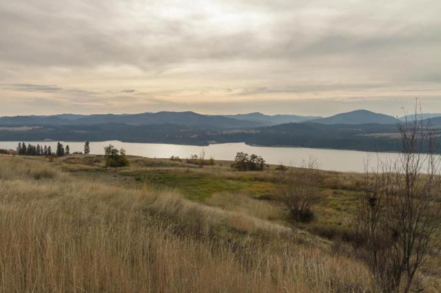 3100 Block Miles Rd Parcel C, Rice, WA 99167 (#201916495) :: The Synergy Group