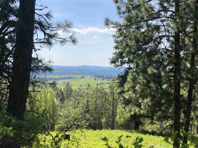 6104 E Willow Springs Rd, Spokane, WA 99223 (#201916531) :: Prime Real Estate Group