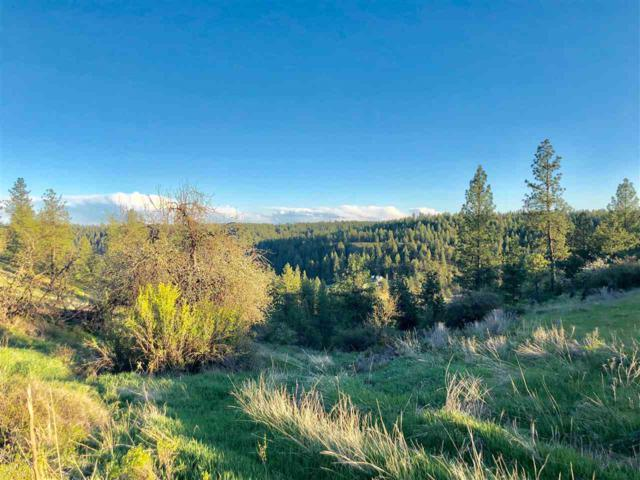 00 W Euclid Rd North Parcels, Spokane, WA 99224 (#201916551) :: The Synergy Group