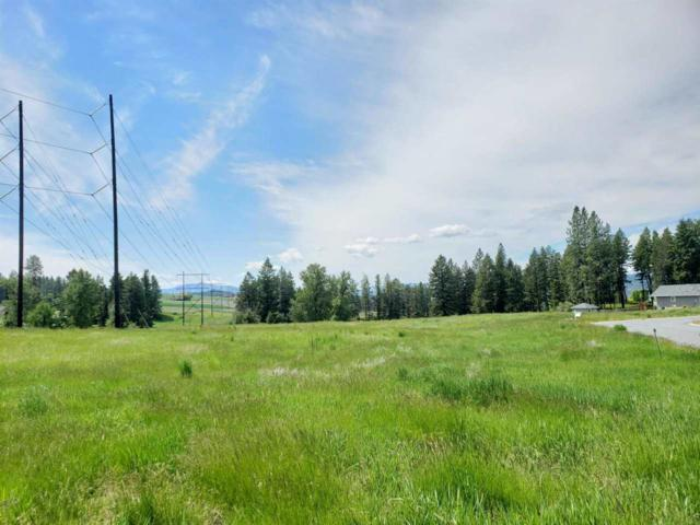 2058 Ringneck Loop, Colville, WA 99114 (#201916728) :: 4 Degrees - Masters