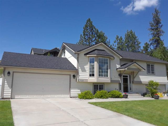 728 E Country Hill Ct, Spokane, WA 99208 (#201916729) :: 4 Degrees - Masters