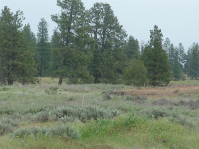 0000 S Rock Lake Rd, Cheney, WA 99004 (#201916764) :: Top Spokane Real Estate