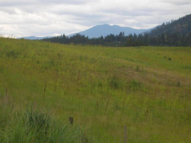 10XX Lot B Hwy 395 Hwy, Colville, WA 99114 (#201916852) :: The Synergy Group