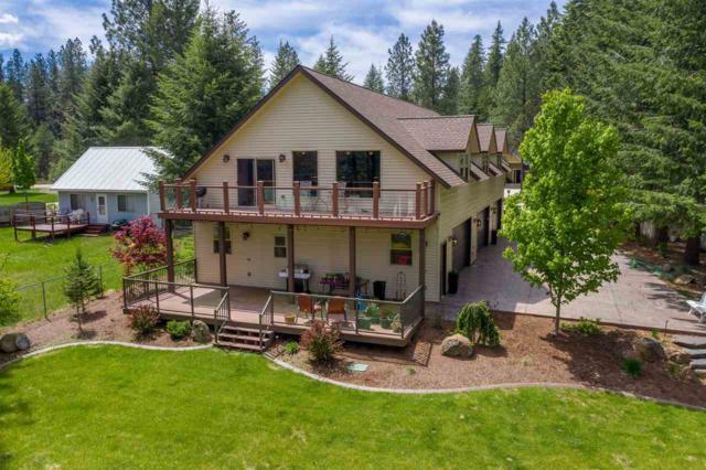 52 Elmes Dr, Newport, WA 99156 (#201916876) :: Top Spokane Real Estate
