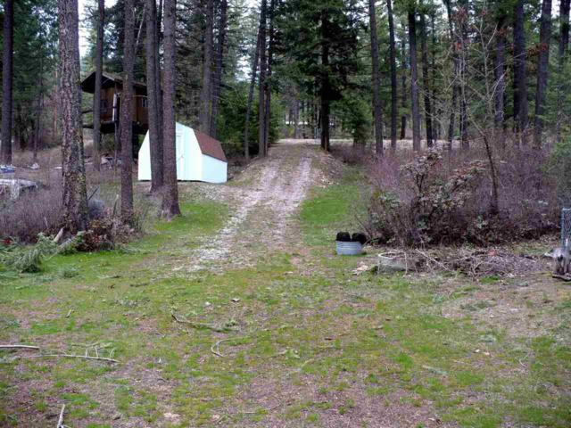 4543 E Deer Lake Rd, Loon Lake, WA 99148 (#201917164) :: The Spokane Home Guy Group