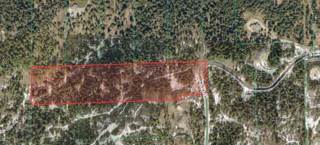 10209 N Elk Ln, Newman Lake, WA 99025 (#201917865) :: The Hardie Group