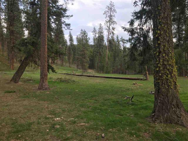 XXX N Highway 395, Kettle Falls, WA 99141 (#201917876) :: RMG Real Estate Network