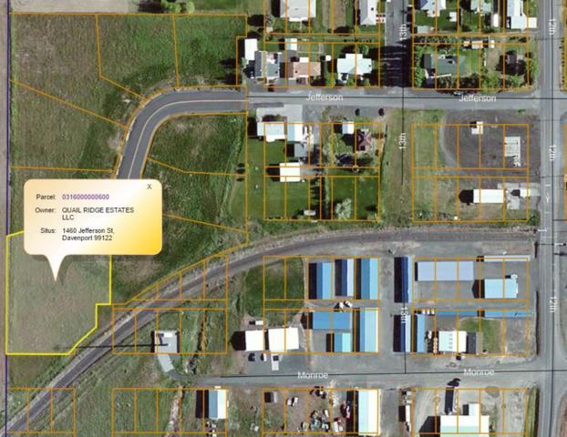1460 Jefferson St, Davenport, WA 99122 (#201917968) :: The Spokane Home Guy Group
