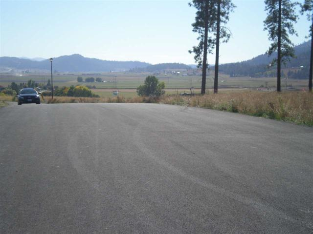 Lot #3 Maven Way, Chewelah, WA 99109 (#201918079) :: Elizabeth Boykin & Keller Williams Realty