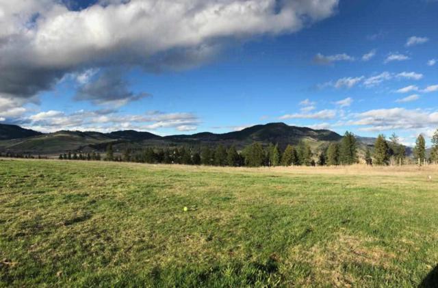 695 Dear Meadow Way, Kettle Falls, WA 99141 (#201918101) :: The Spokane Home Guy Group